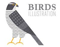 Aves da Serra da Lousã