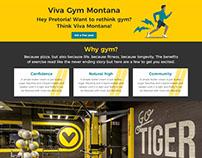 Viva Gym SA Blog and webpage mockups