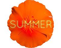 P.A.R.O.S.H. summer 2013