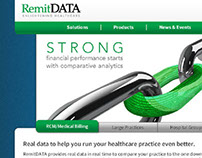RemitDATA website