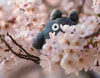 Totoros Journey