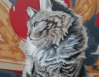 Cat Portraits | Meek