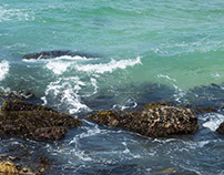 Meander through Maroubra Beach