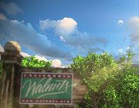California Walnut - the Wallie Teaser