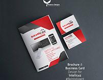 Brochure & Business Card - Intellicaz