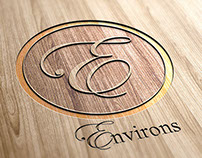 Environs Paint