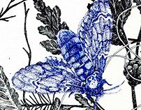 Anitcha (Inspirada en La Primavera de Botticelli)