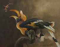 Hornbills of the world