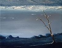Kış Pırıltısı | Winter Sparkle