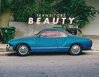 Transitory Beauty