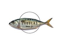 Chez Douglas