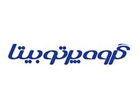 Parto-e Bita Group Identity Design