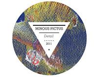 MINOUS PICTUS