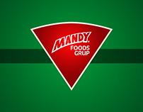 Mandy Foods Grup - Website proposal - 2012