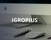 iGropius - Conceptual Webdesign Layout