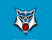 Minnesota Wolves