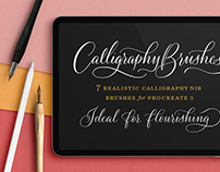 Calligraphy Nibs Brush Pack ByMolly Suber Thorpe