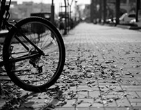 bicycles along the streets