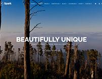 Spark WordPress Theme - Revolution Slider