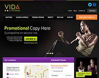 VIDA Website