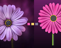 Photo to Vector Flower Design