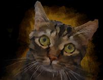 The cat; my cat!