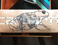 Bully Frog skate +timelapse