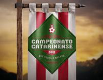Campeonato Catarinense 2013