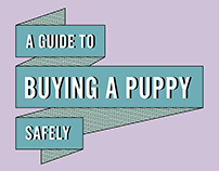 Buy a Puppy Safely Website
