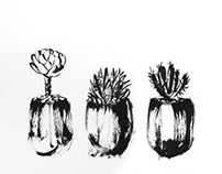 Chinese Ink Painting 06 - Succulent Plants