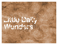 LITTLE DAILY WONDERS