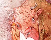 Bull | Portfolio Development