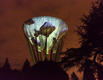 Tower water and carp / Videoprojection