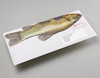 The Marttiini Fish Mailing