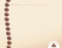 Turkish Hazelnuts Promotion Board