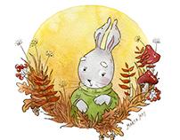 Rabbit. Autumn