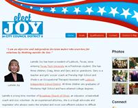 Political Campaign Website (2011)