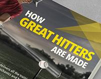 Baseball Campaign