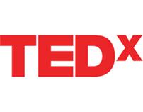 Web Design: TEDxBITSGoa 2013