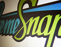 Theme Snap - Logo design