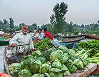 Floating Vegetable Market in Dal Lake, Kashmir
