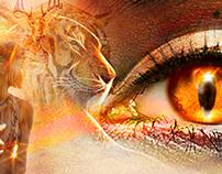 Illuminating Eye Series Paintings/Digital Art