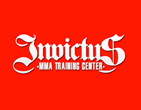 Invivtus Fight System MMA School