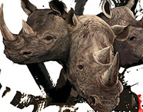 rhinoceros cover