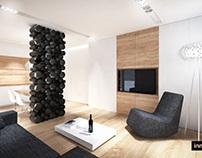 Apartment in Brno