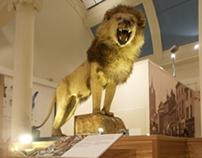 Pillar Gallery - Paisley Museum
