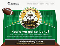 Super Bowl Groundhog Day HTML Email - Sony