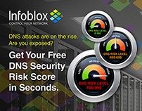 Infoblox DNS Security Risk Assessment Online App