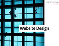 Acropolis Museum Web Design
