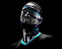 charlotte hornets / playoffs 2016